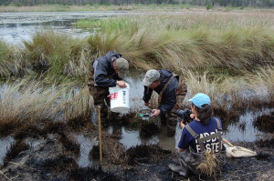 Students from Clemson's Kennedy Waterfowl and Wetlands program sample invertebrates in Nemours impoundments.